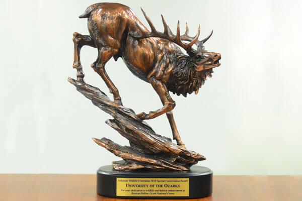 AWF Trophy